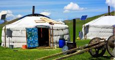 mongolian yurt 230-x-120