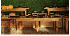 Wood Buffet 2 230 x 120