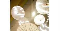 Asian Umbrellas 230 x 120