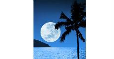 Moonlight 230 x 120
