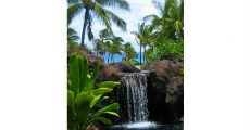 Waterfall 230 x 120