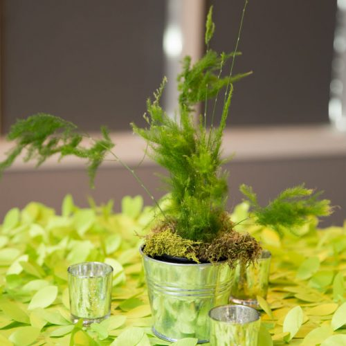 MN Bride Best 2017 green leaf 1000
