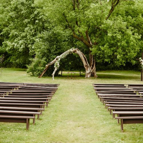 Daniels Wedding ceremony tree 500 x 500