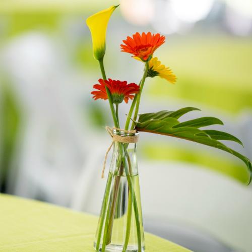 Floral arrangements MN