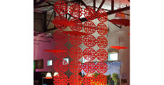 Chinese Curtain
