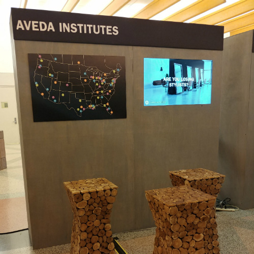 Aveda Institutes Wall Map
